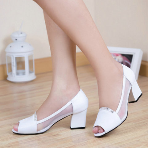 Plain Weave Nylon Mesh Application Shoe