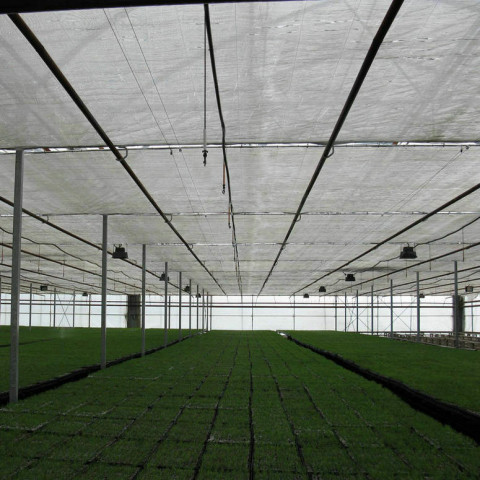 Greenhouse-Shade-Cloth-Supplier